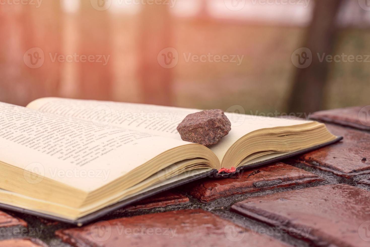 piedra en un libro foto