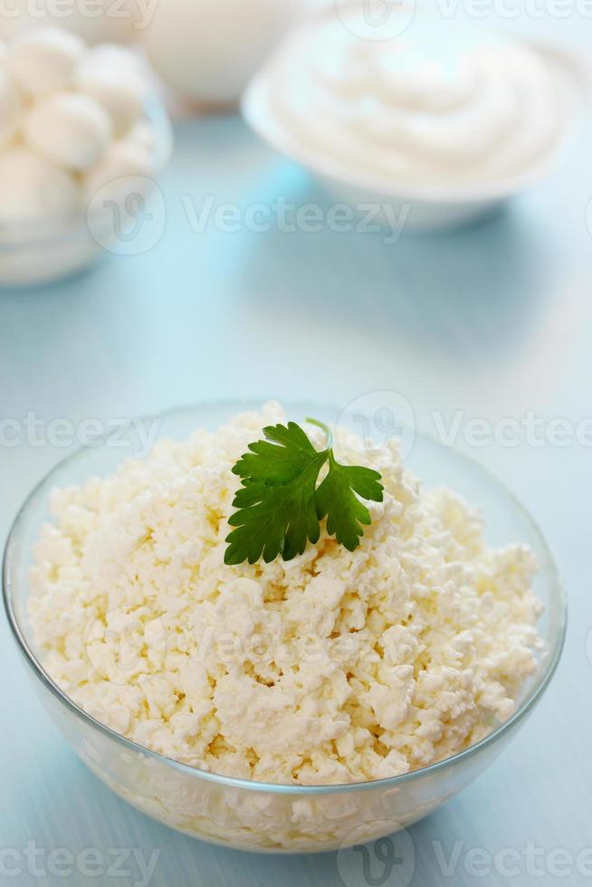 Cottage cheese with parsley photo