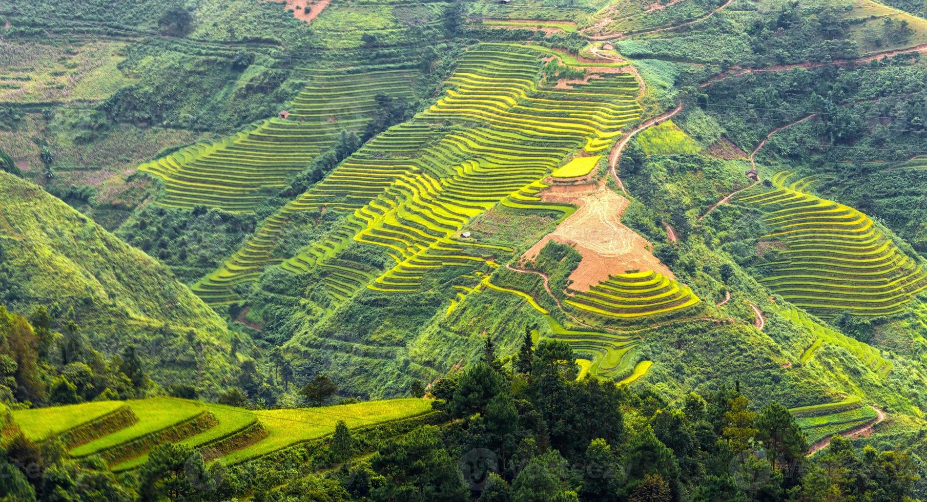Terraced fields on the hills of Ha Giang, Vietnam photo