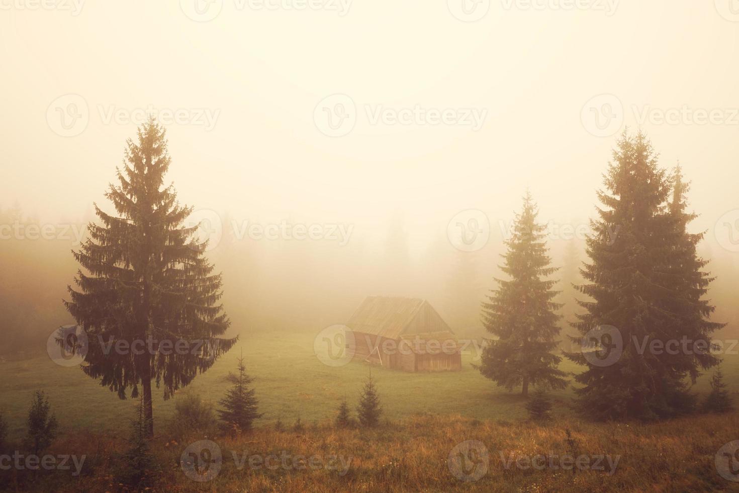 cabaña en el campo foto