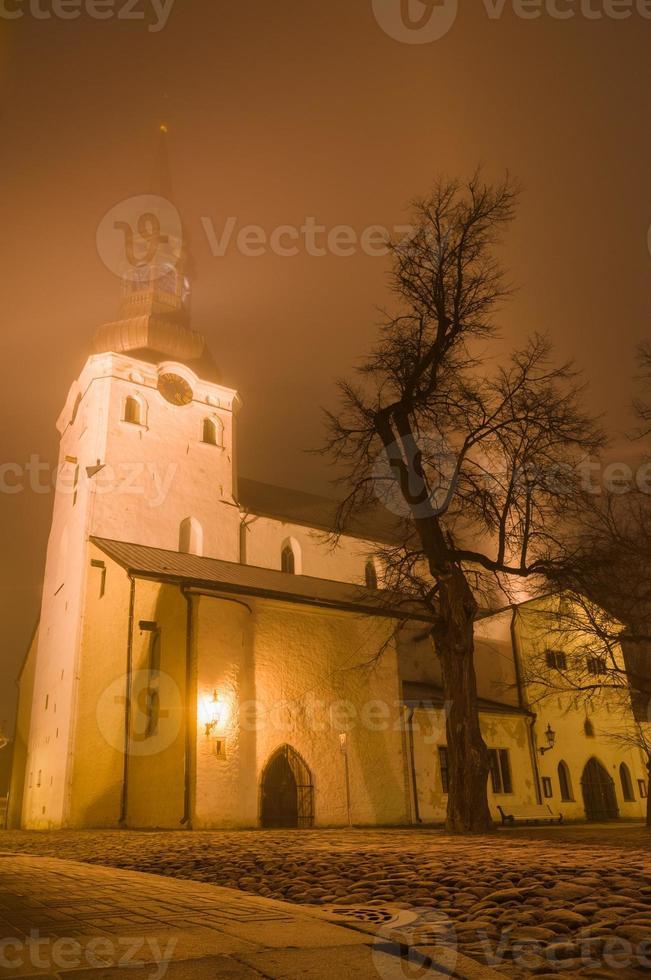 Catedral de Santa María (iglesia de la cúpula) en la noche helada y brumosa, Tallin foto