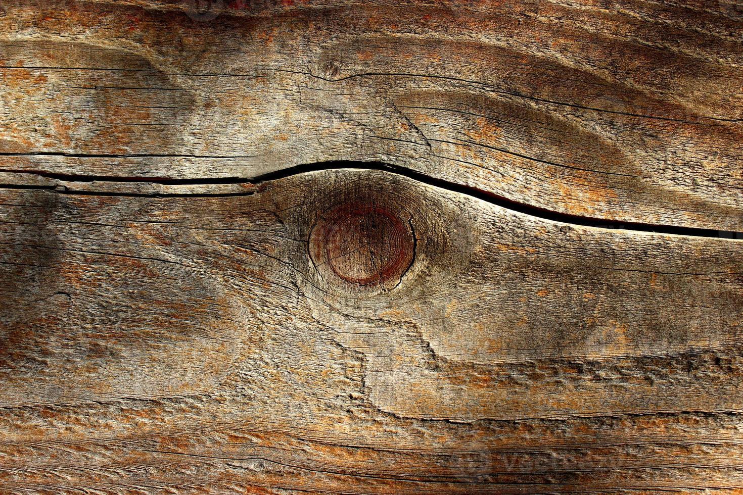 Old plank photo
