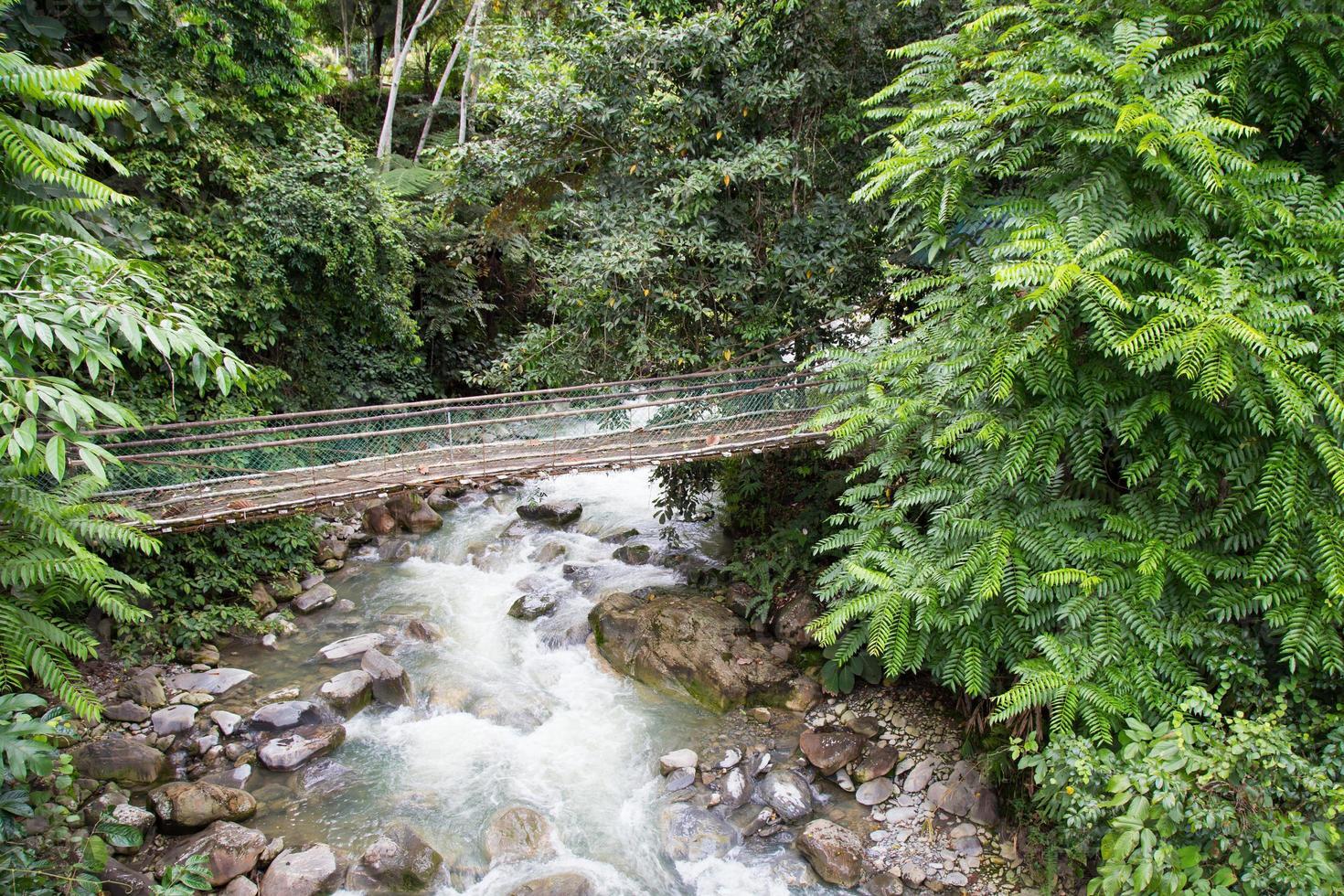 Poring Hot Spring, Sabah, Borneo, Malasia foto