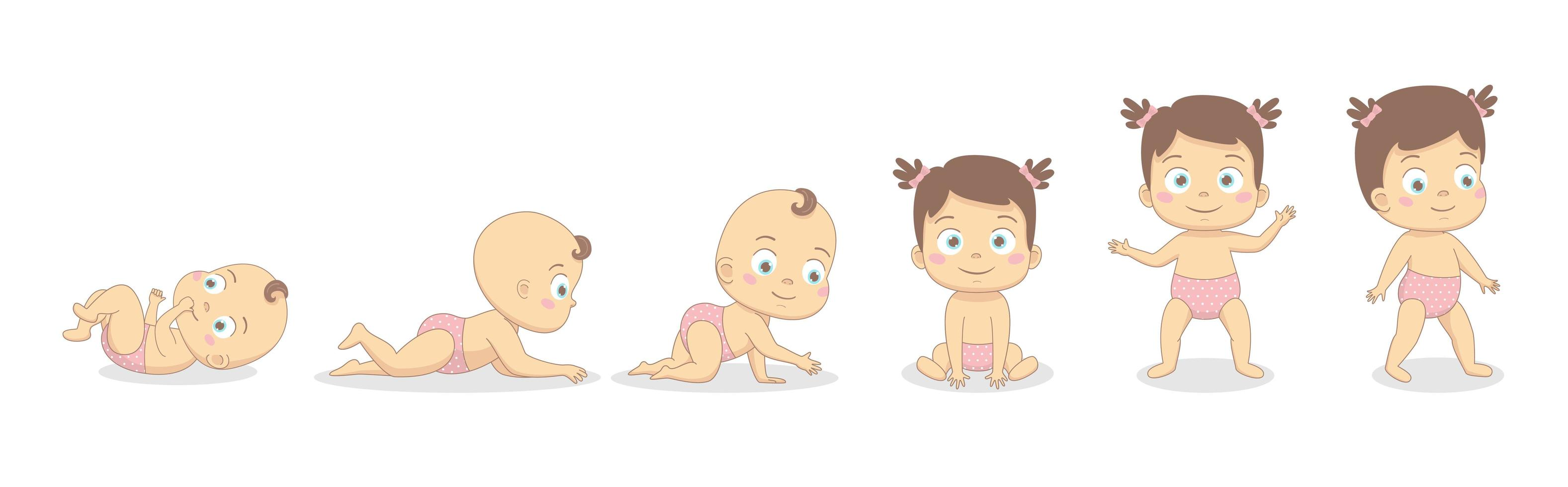 Baby girl growth process. vector