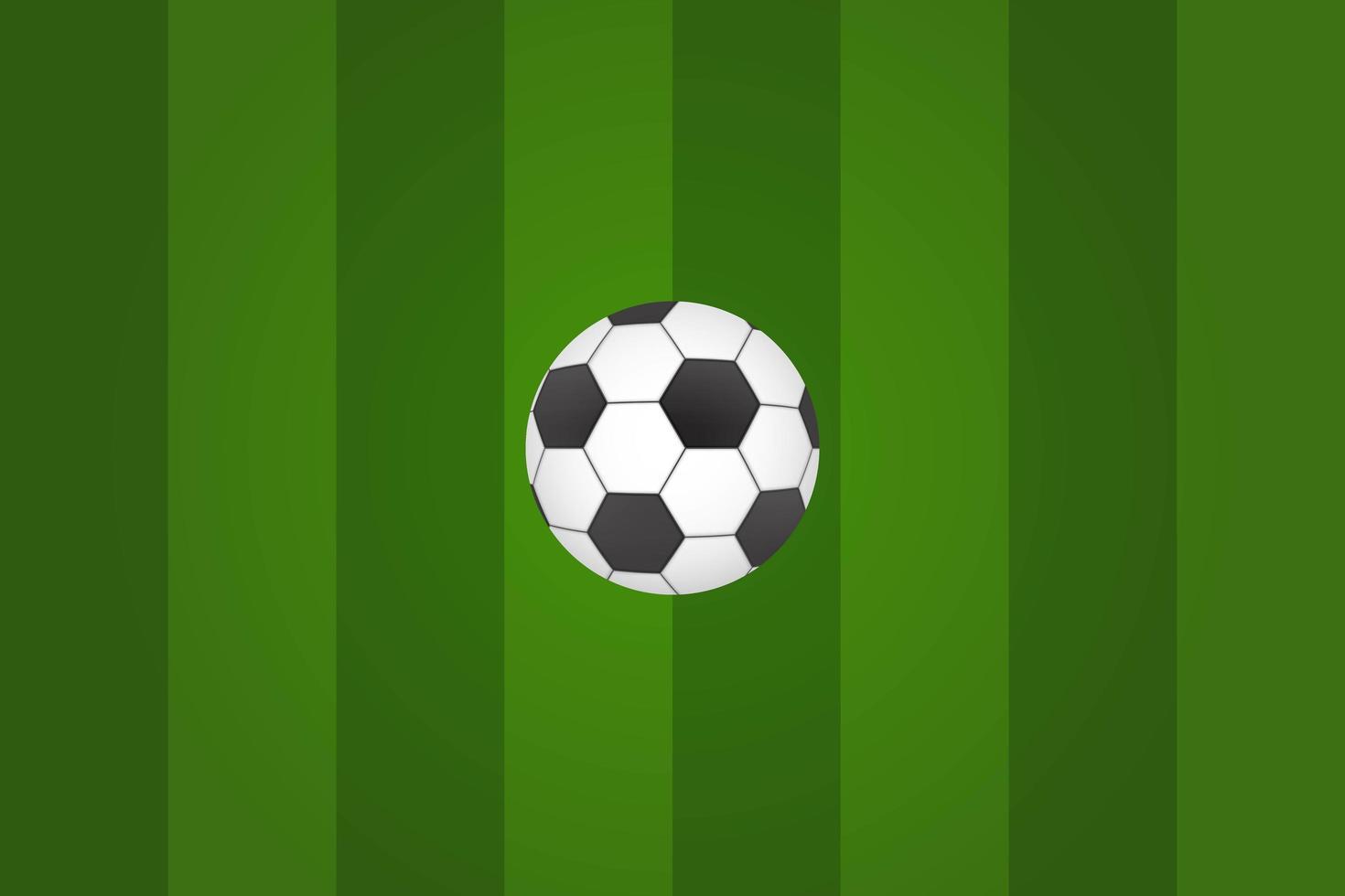 bola de futebol na grama verde vetor