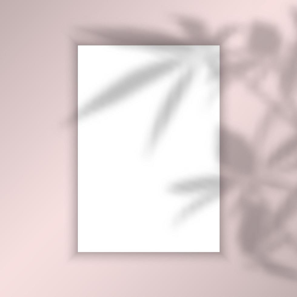 fundo de imagens em branco com sobreposição de sombra de folhas vetor