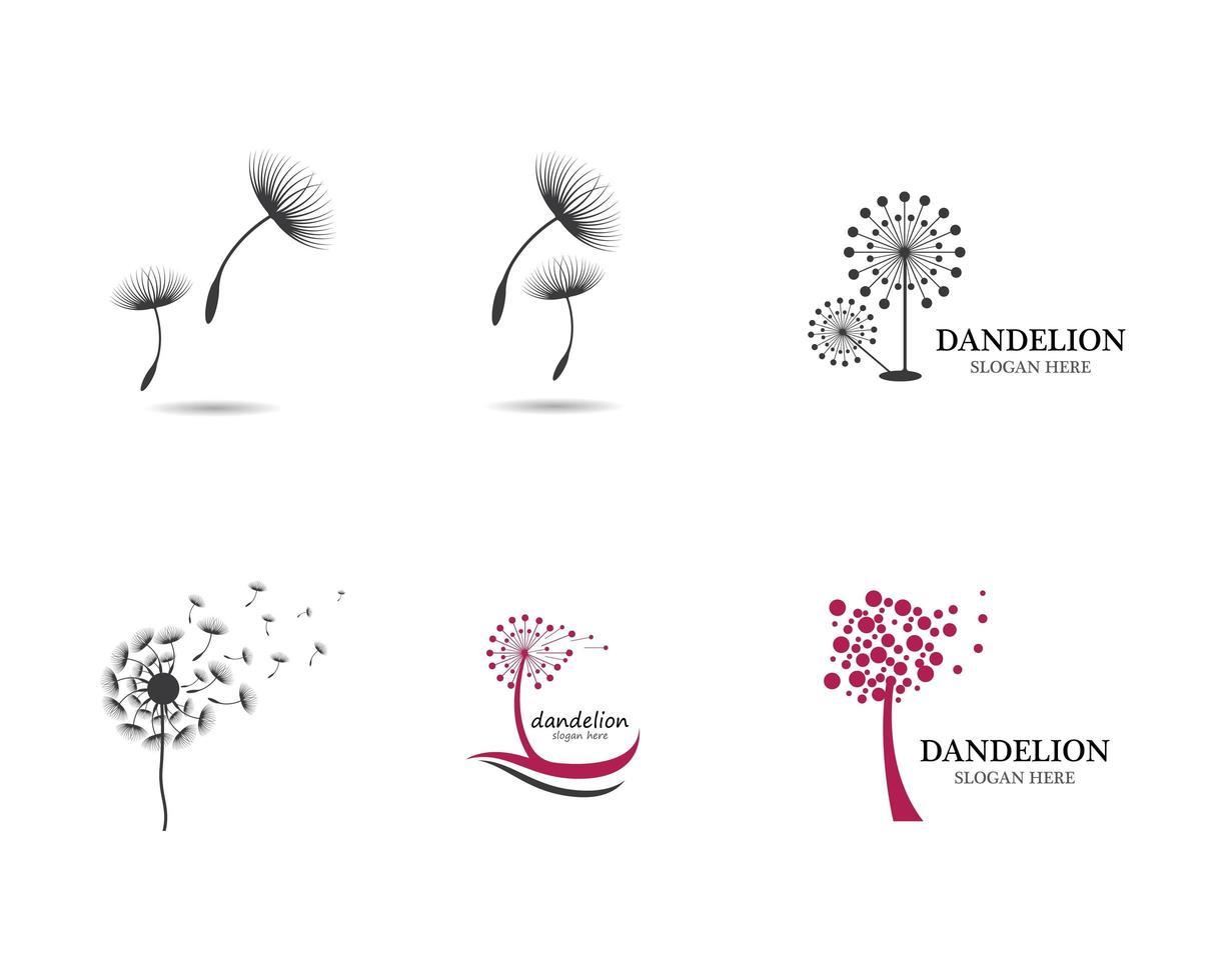 conjunto de logotipo-leão vetor