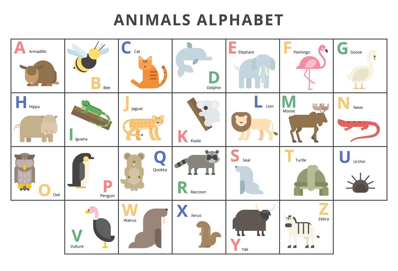 conjunto de alfabeto de animais selvagens vetor