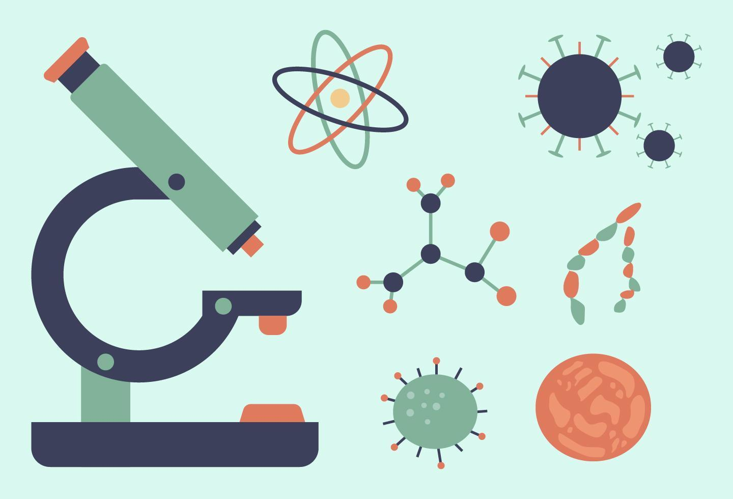 Collection of biology icons vector
