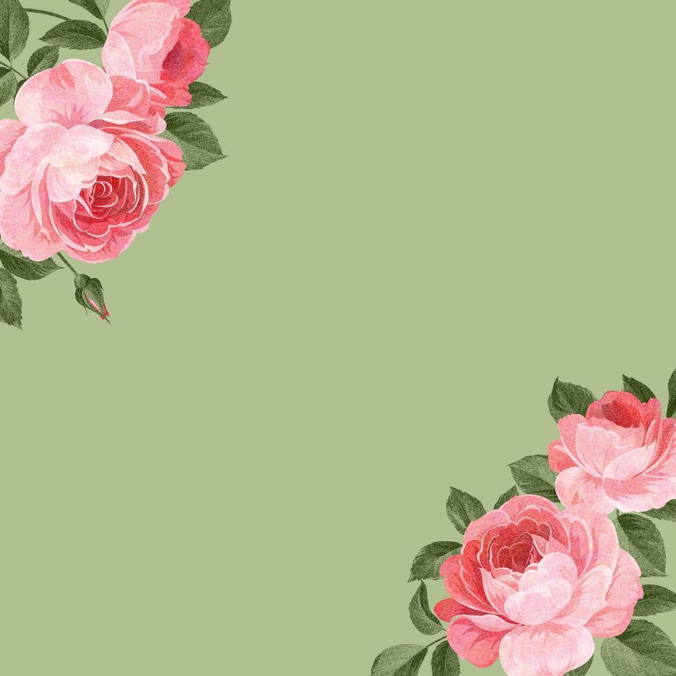 hand getekend roze rozen achtergrond vector