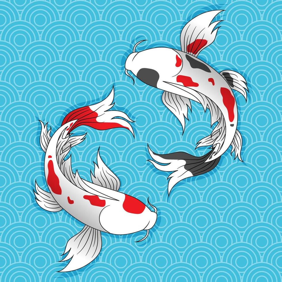 Two Japanese Koi fish swim. vector