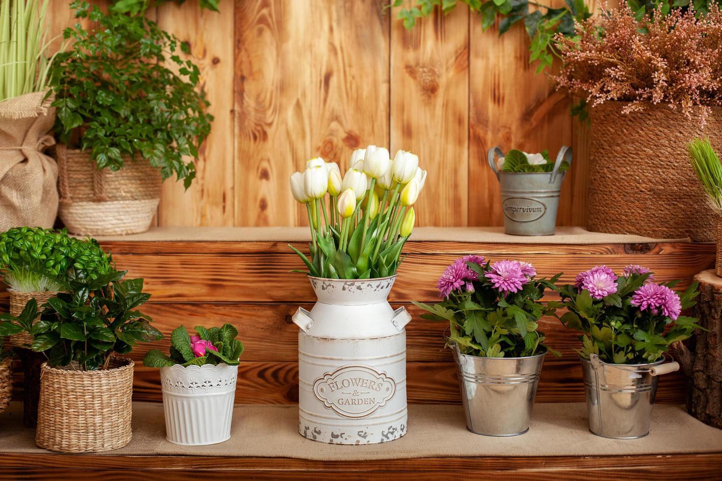 ramo de tulipanes blancos foto