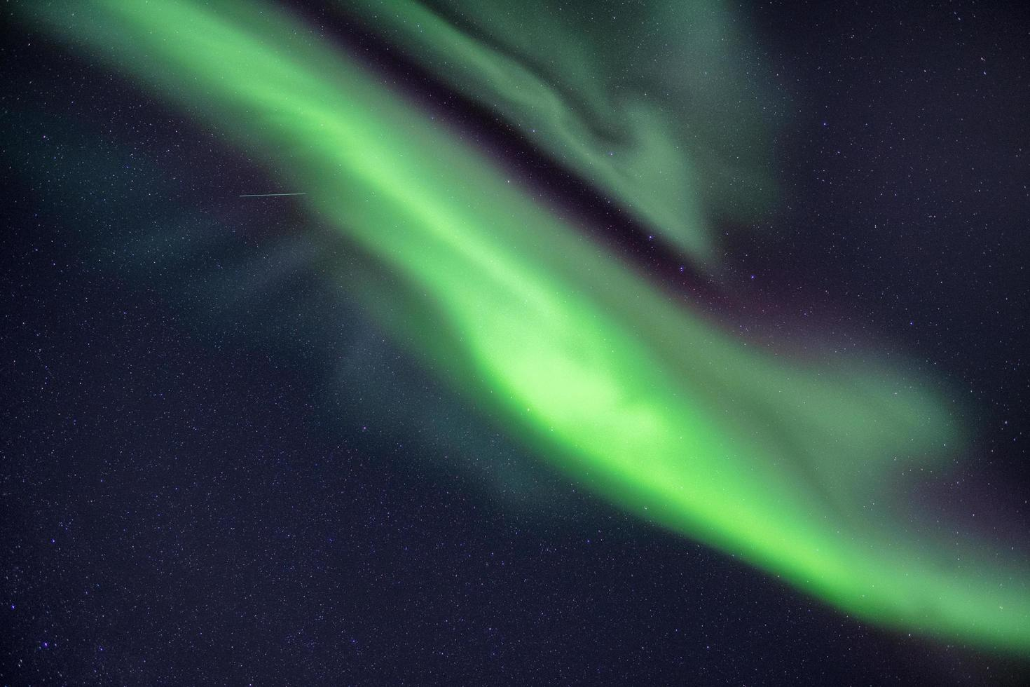 Northern lights in the night sky photo