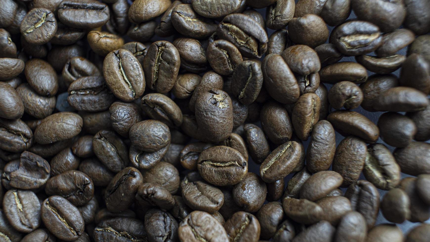 granos de café tostados foto