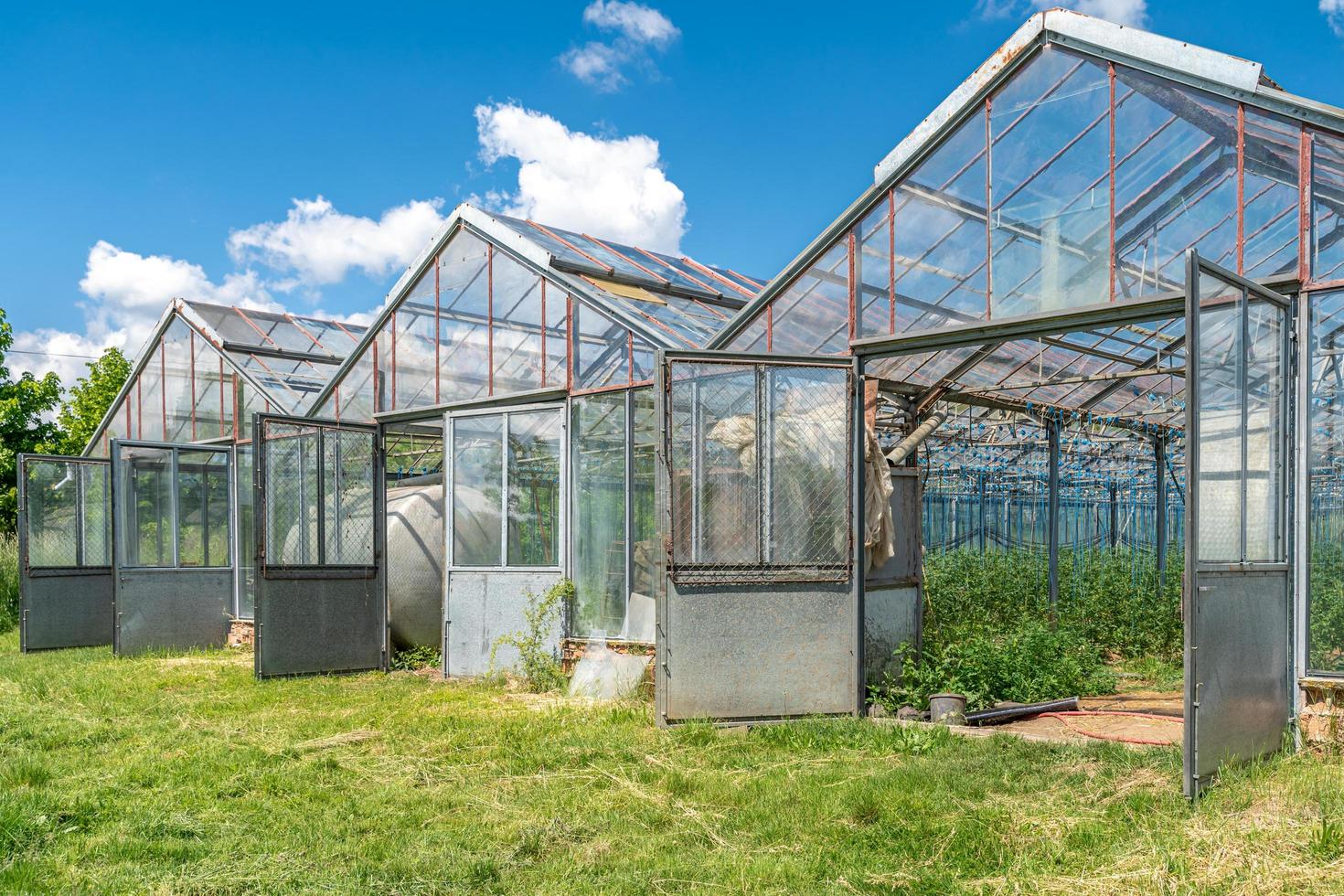 A row of greenhouses  photo