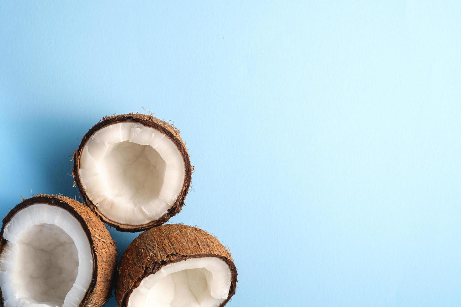 Coconuts on blue vibrant plain background photo
