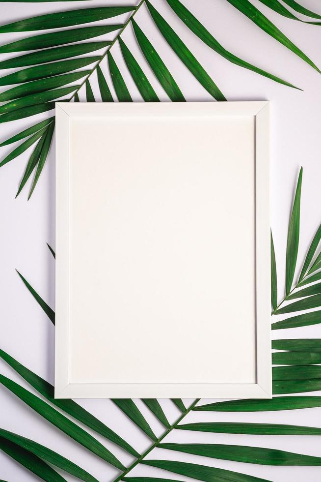 White picture frame with empty template on palm leaves, white background photo