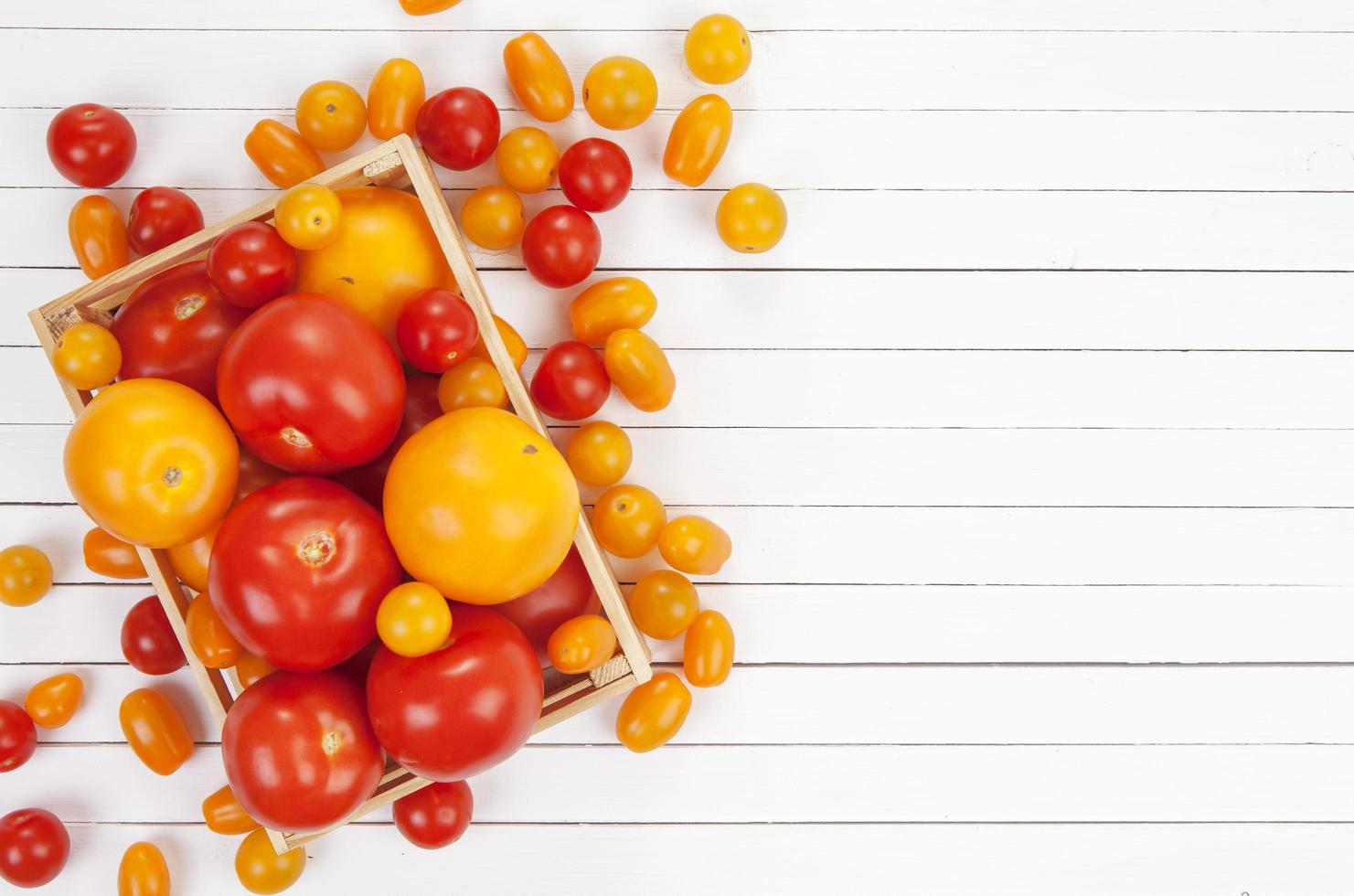 Colorful tomatoes on white background photo