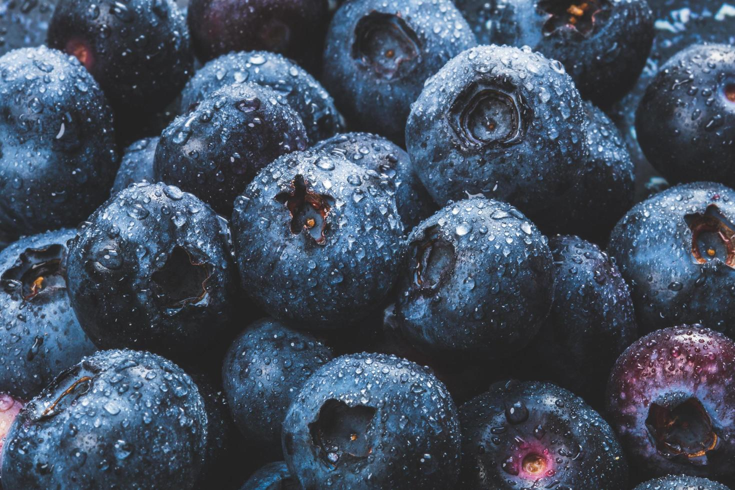 Blueberries with water drops photo