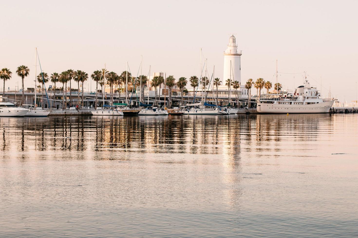 Marina boats docked photo