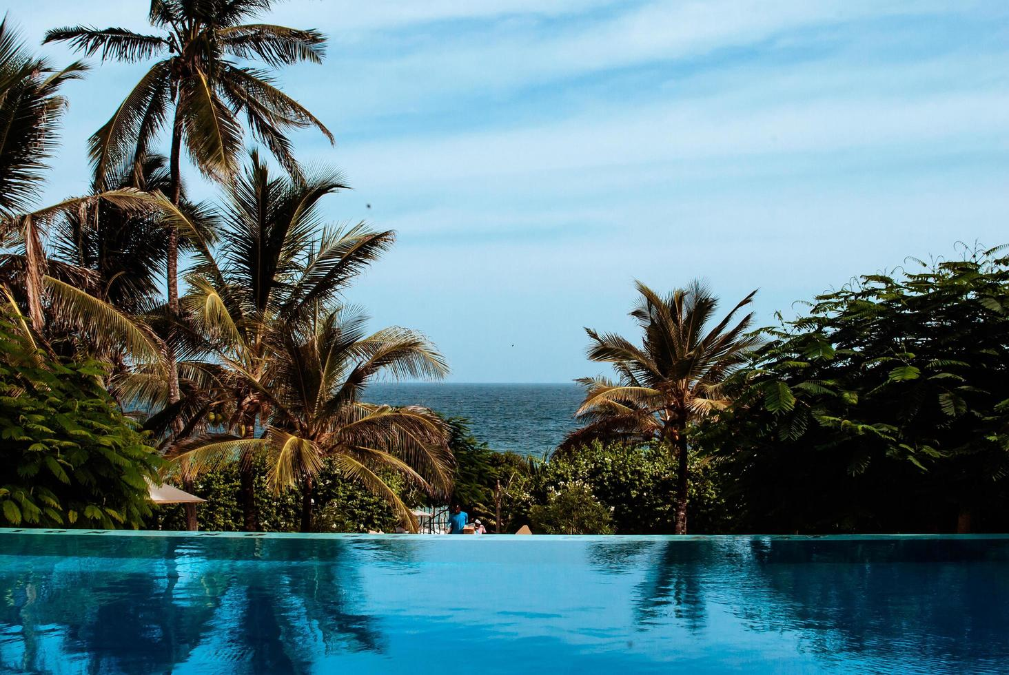 Resort swimming pool and palm trees photo