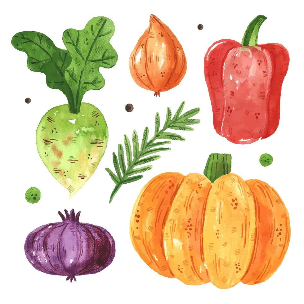 conjunto de verduras de temporada vector
