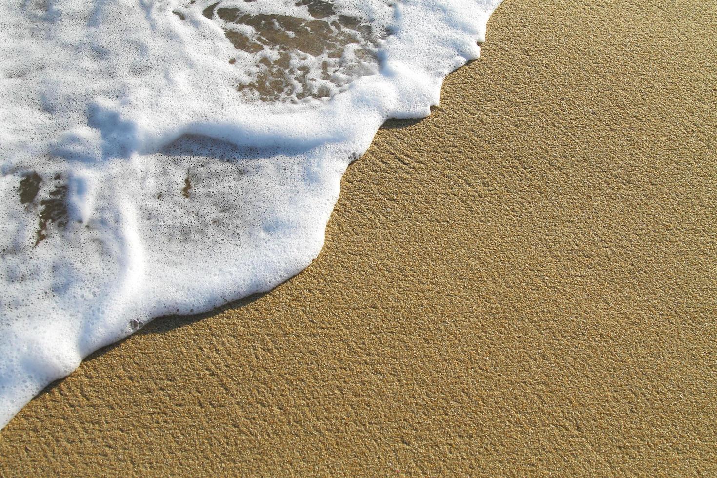 Seashore foam on beach in the sun photo