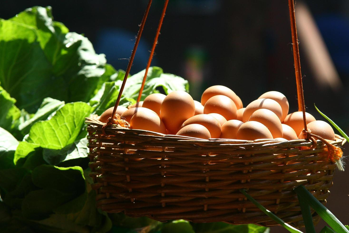 Basket filled with eggs photo