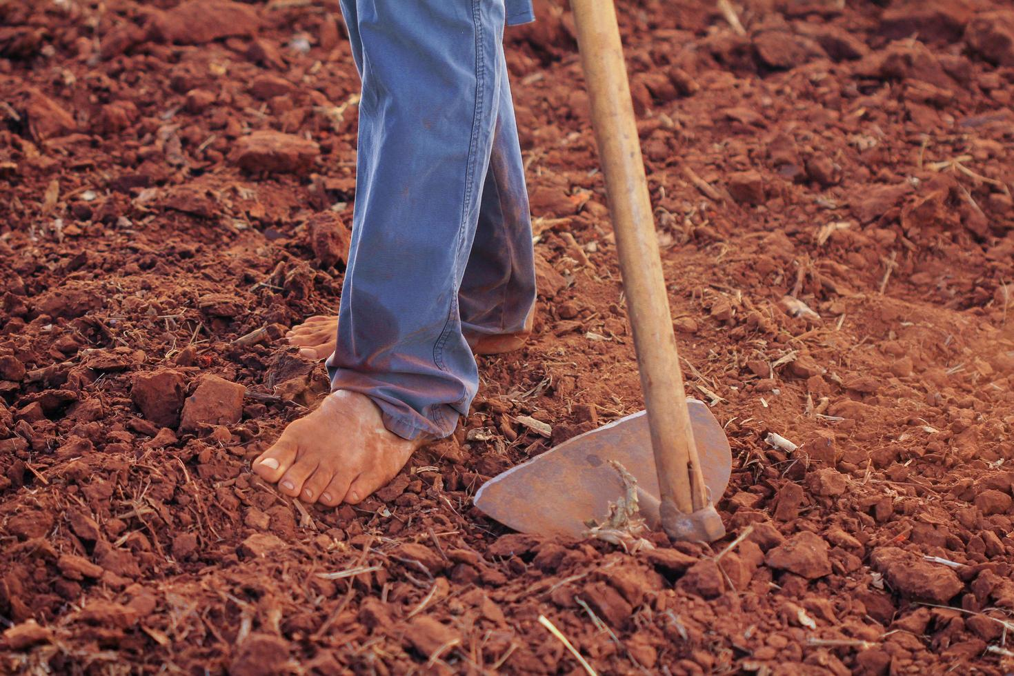 Person plowing soil photo