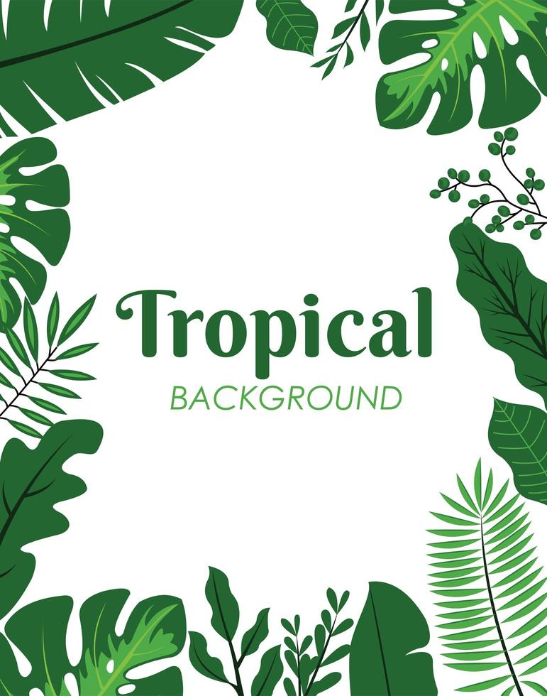 Green tropical leaves decoration vector