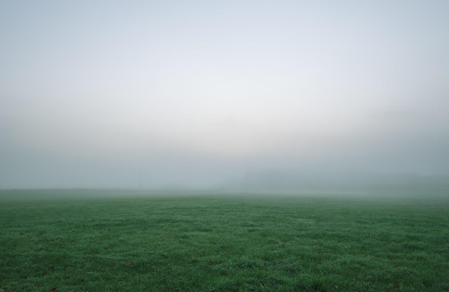 Foggy green grassy field photo