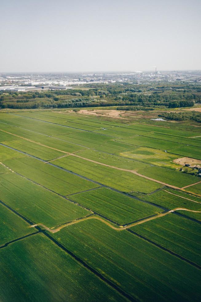 Green farm fields photo