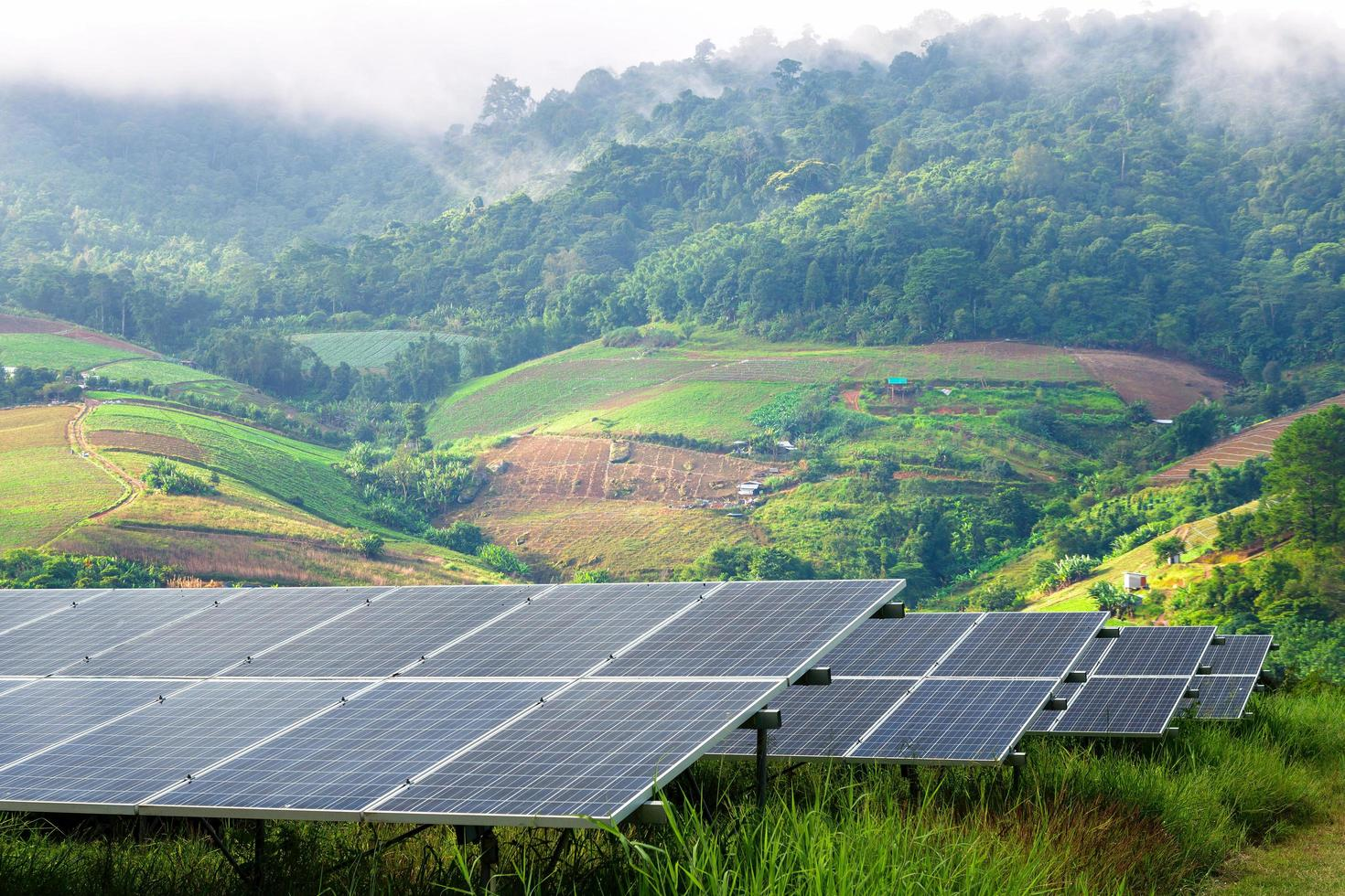 Solar panel field sits in foreground of lush foggy village photo