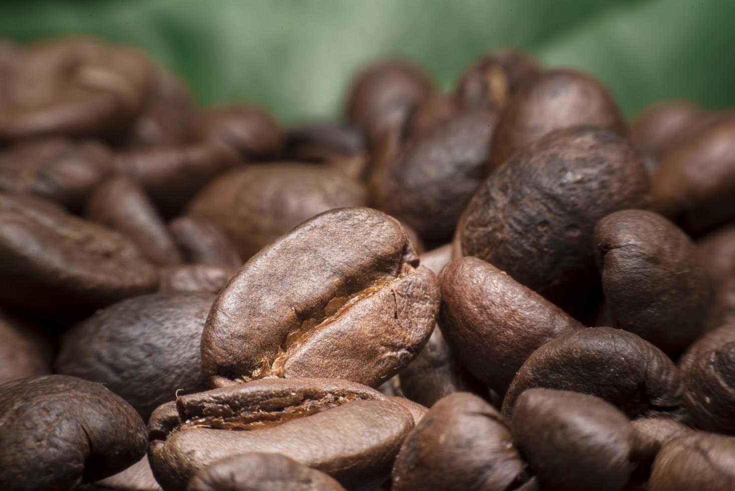 Coffee beans on green background photo