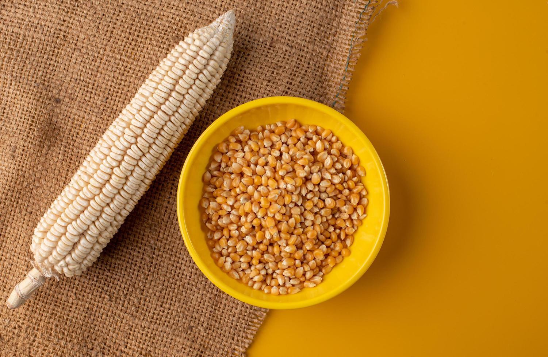 Popcorn kernels on yellow background photo