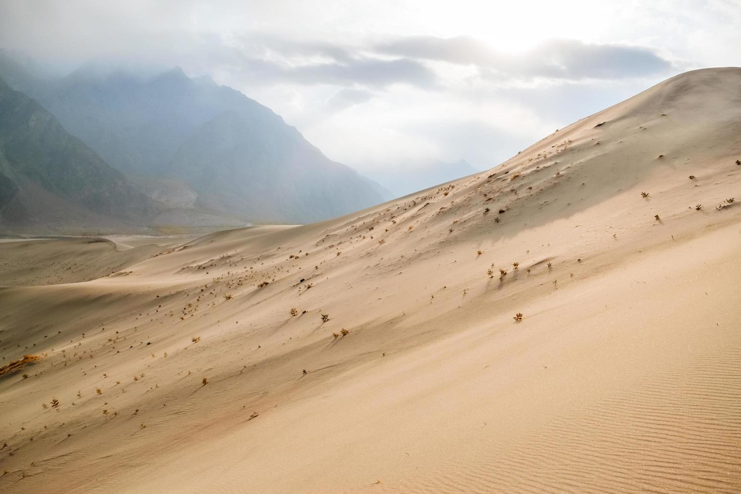 Sand dunes of cold desert amid mountains photo