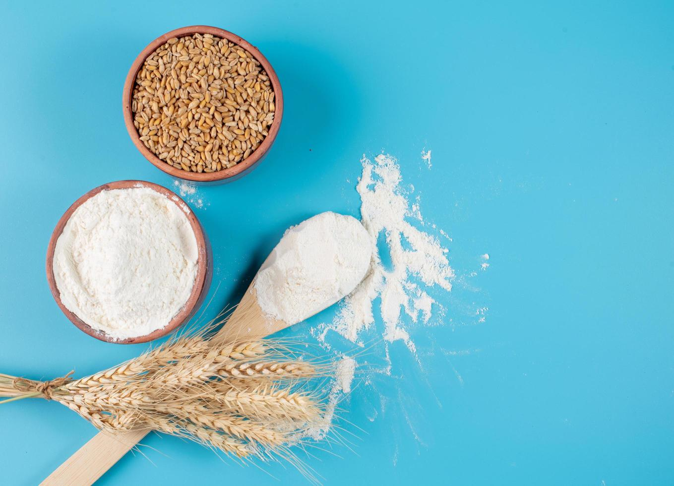 Flour and wheat on blue background photo