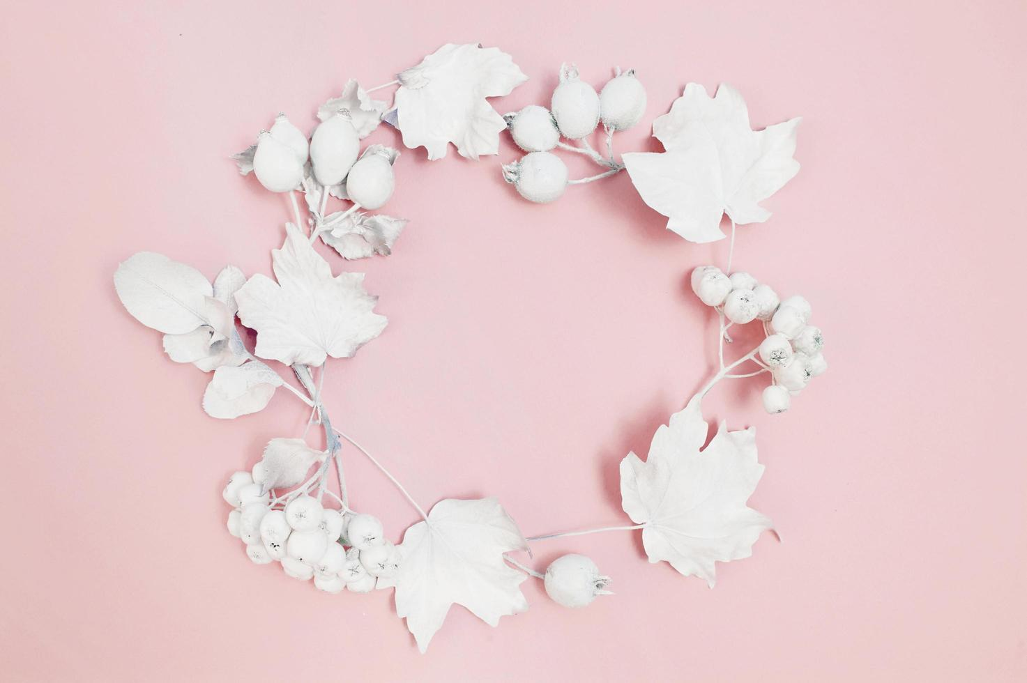 Circle of white berries and white leaves on pink background photo