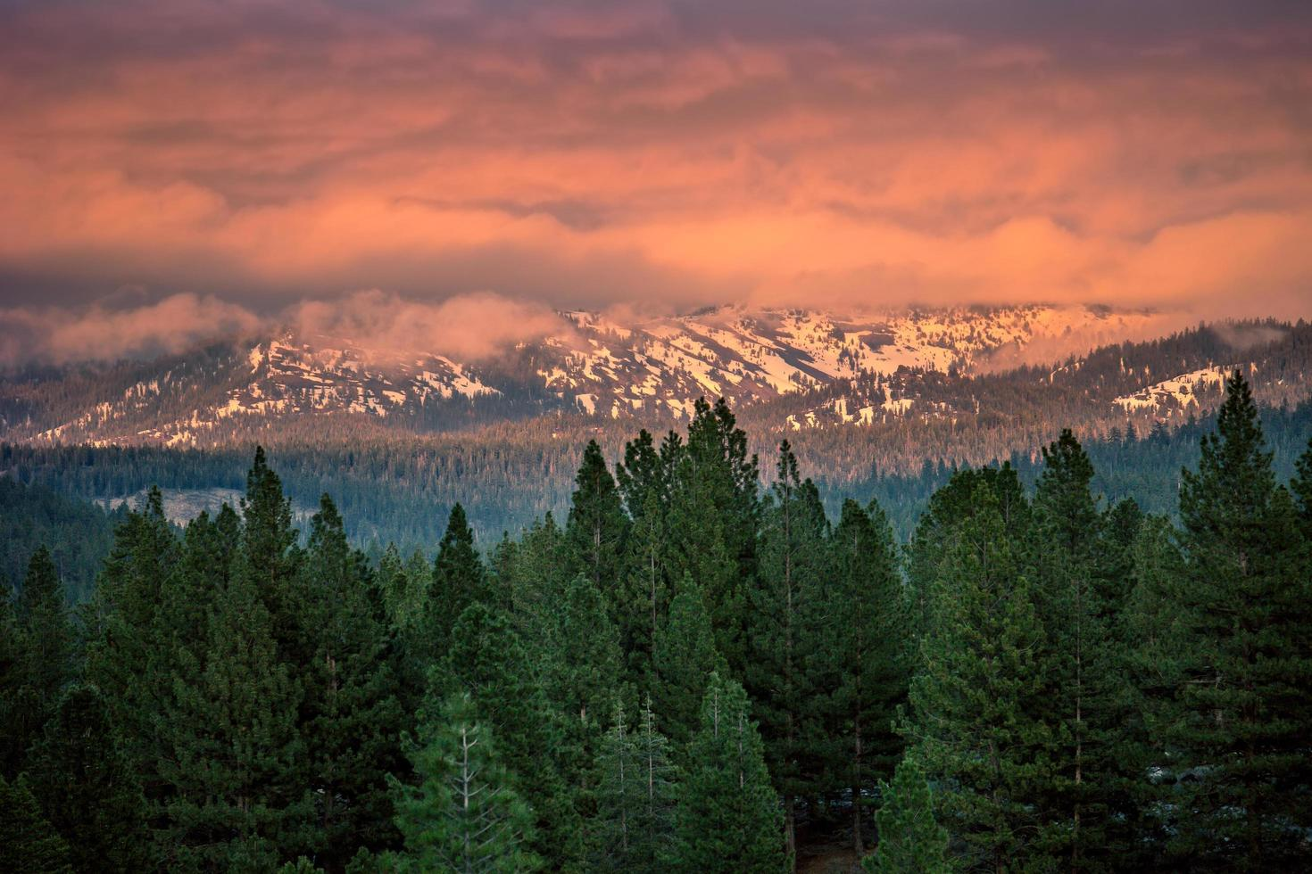 Trees in front of mountains at sunset photo