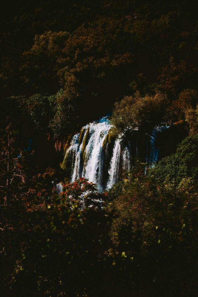 Lone waterfall in the forest  photo