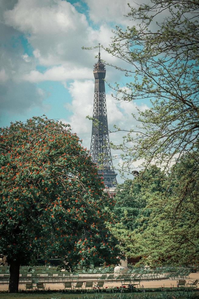 árboles verdes cerca de la torre eiffel foto