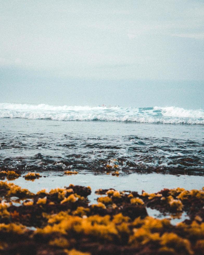 Waves on a seashore photo