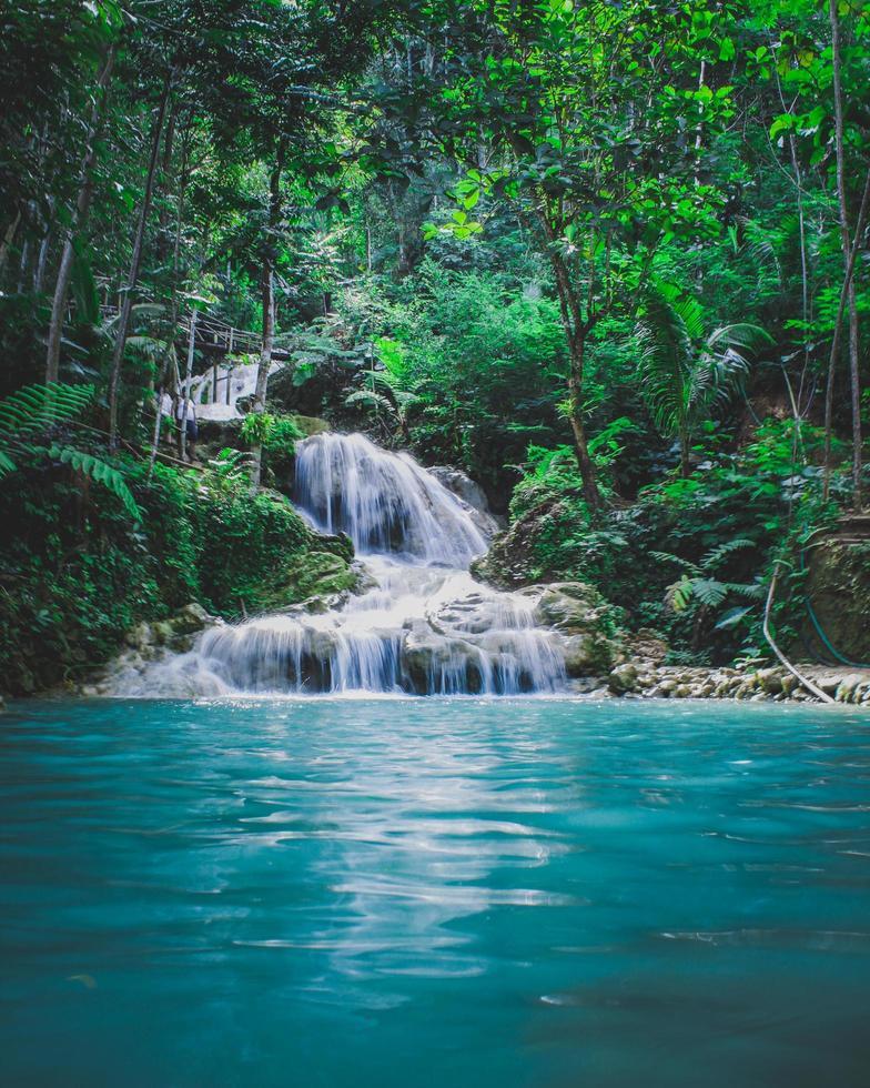 Waterfall between trees photo