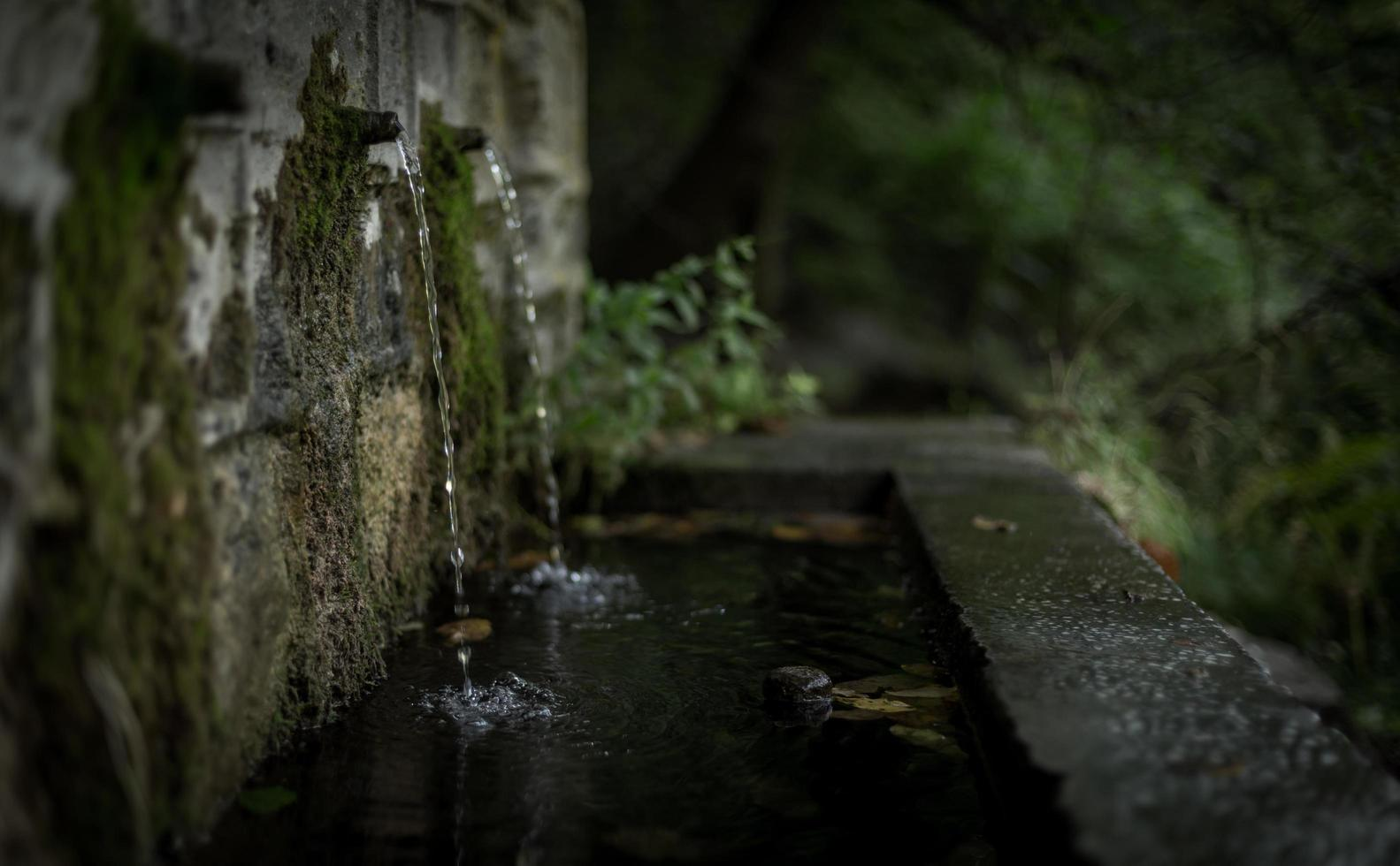 Water drops on concrete wall photo