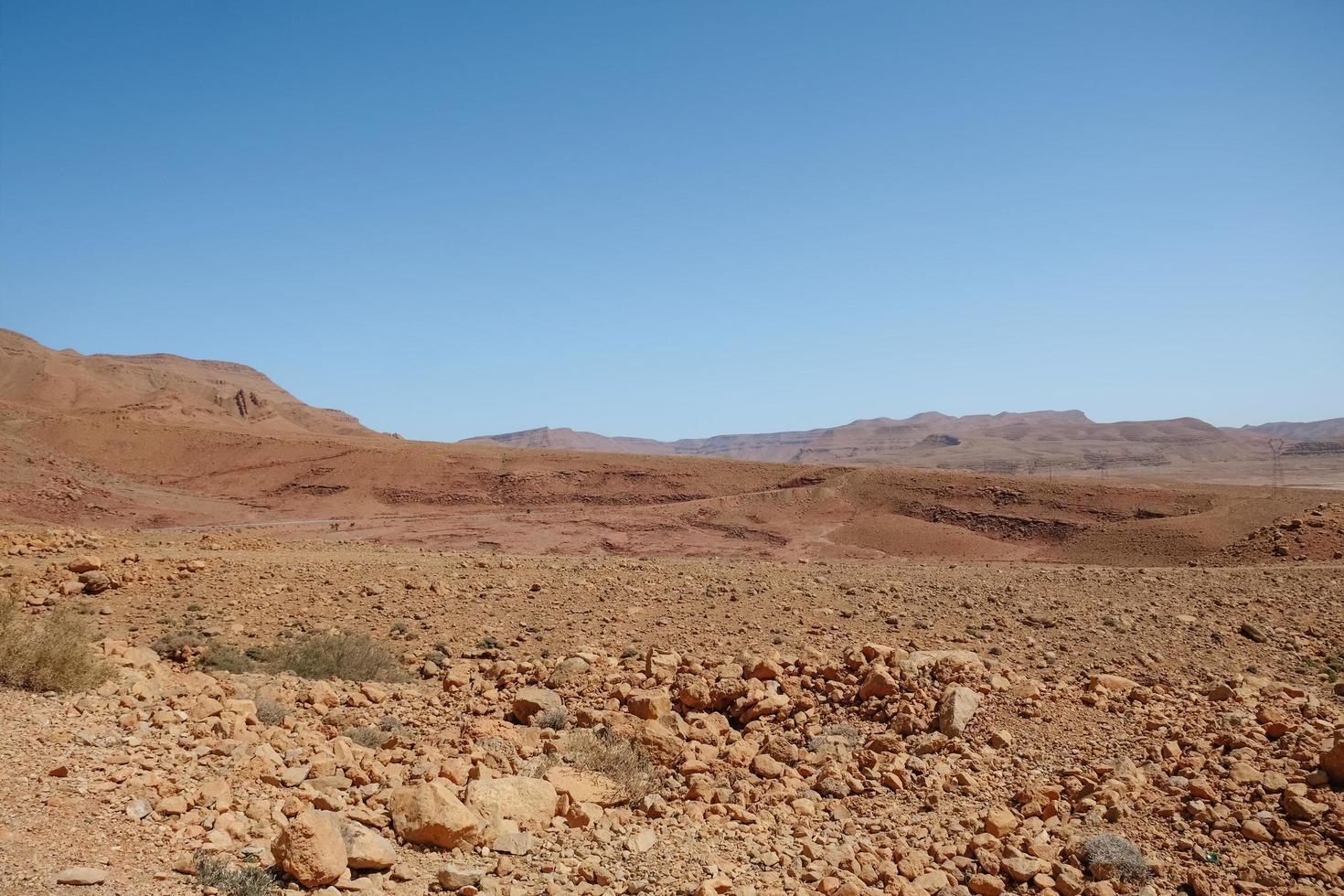 Drought land desert  photo