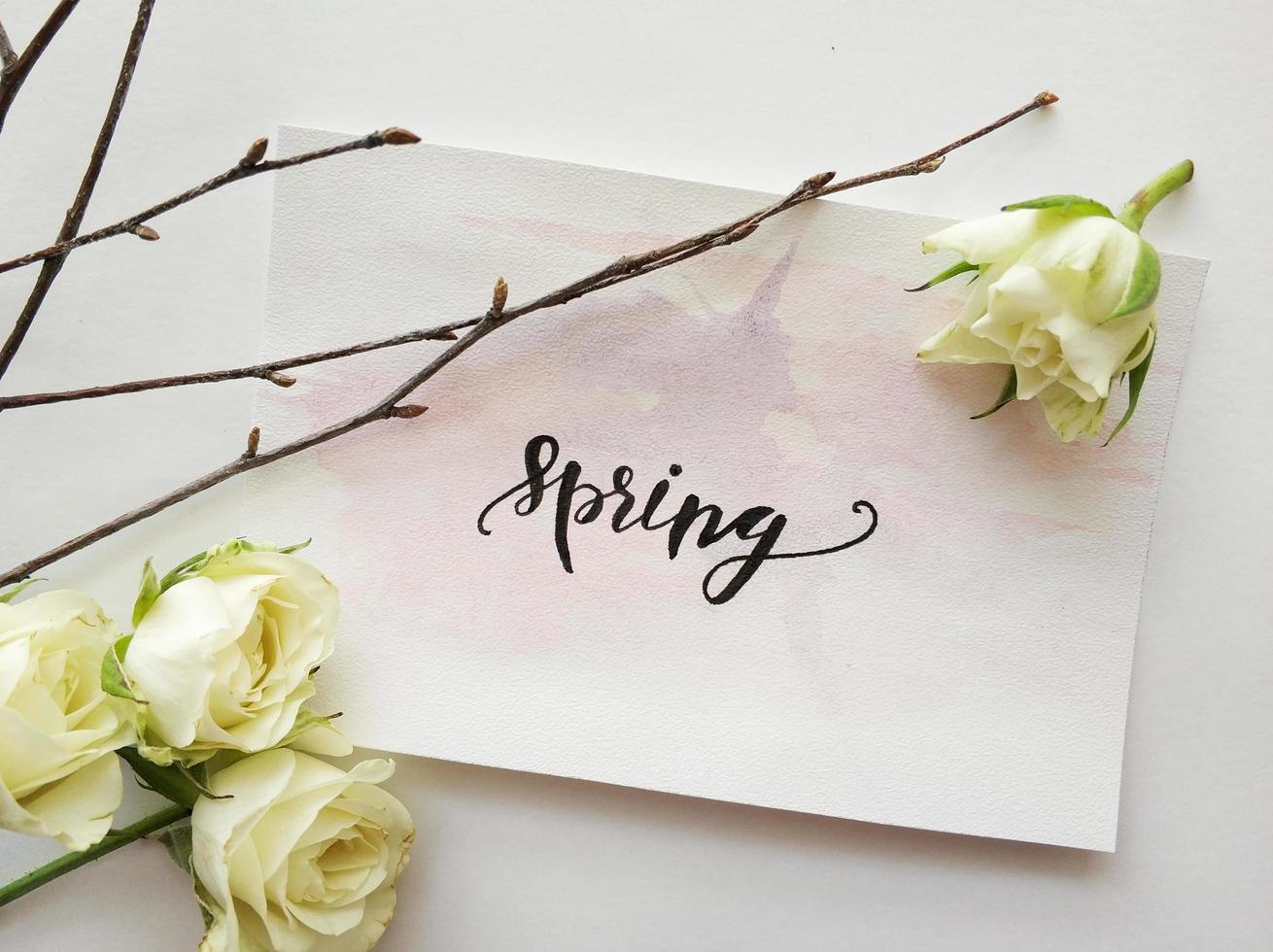 Spring sign with white flowers photo