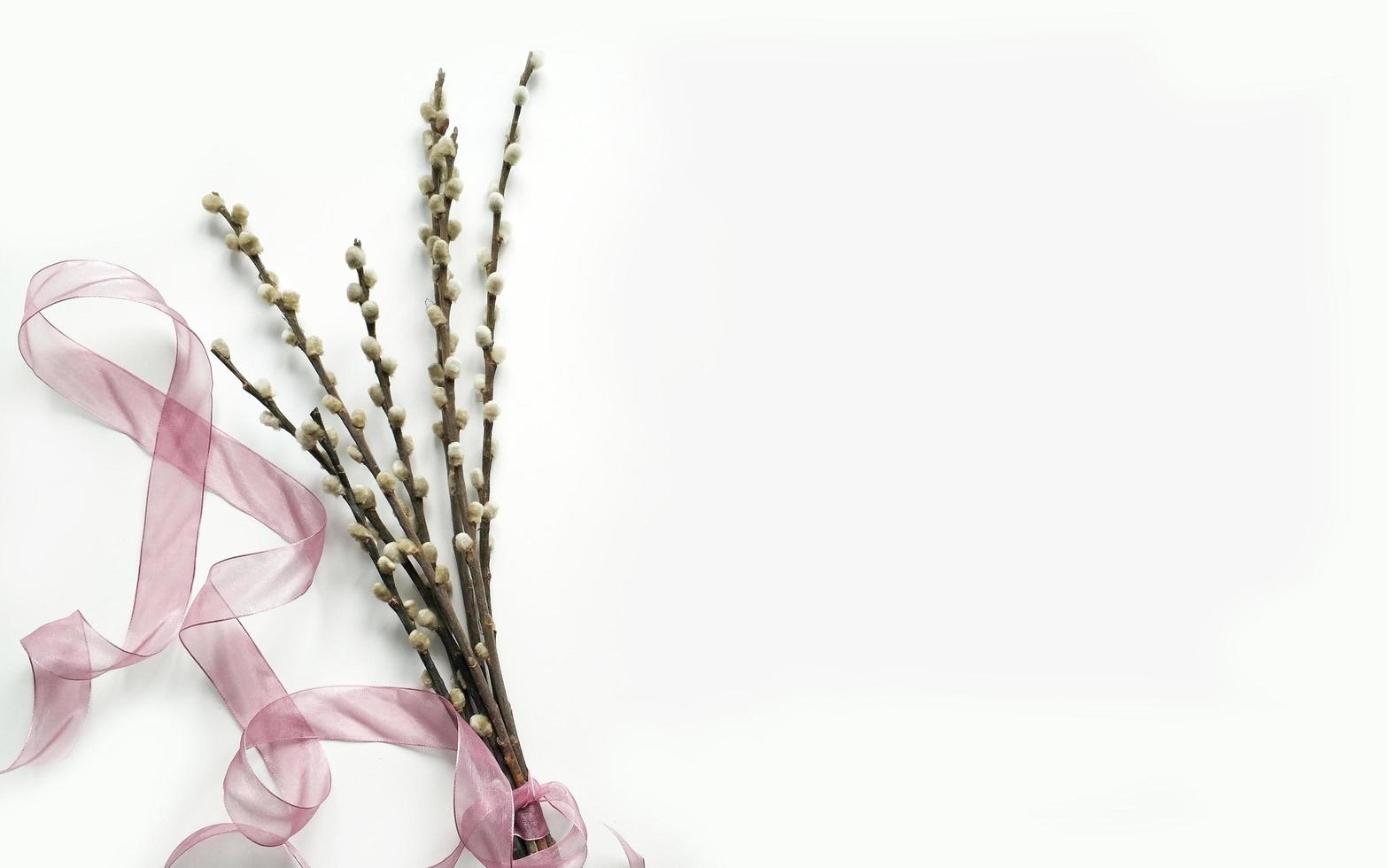 Bouquet of willow blossoms with ribbon photo