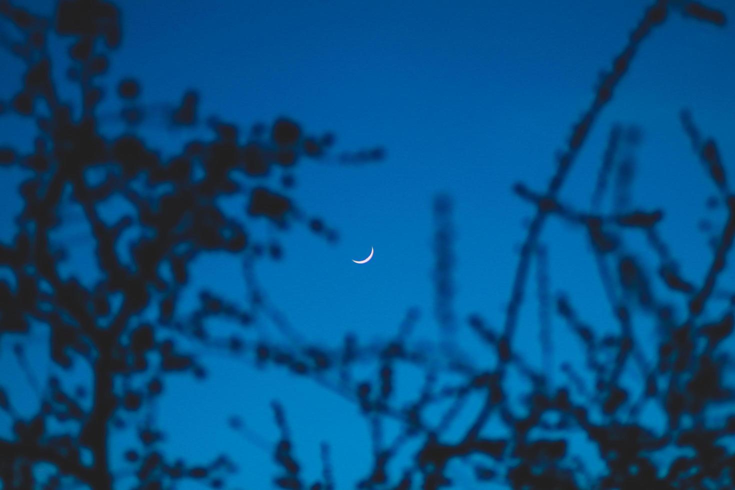 Waxing crescent moon photo