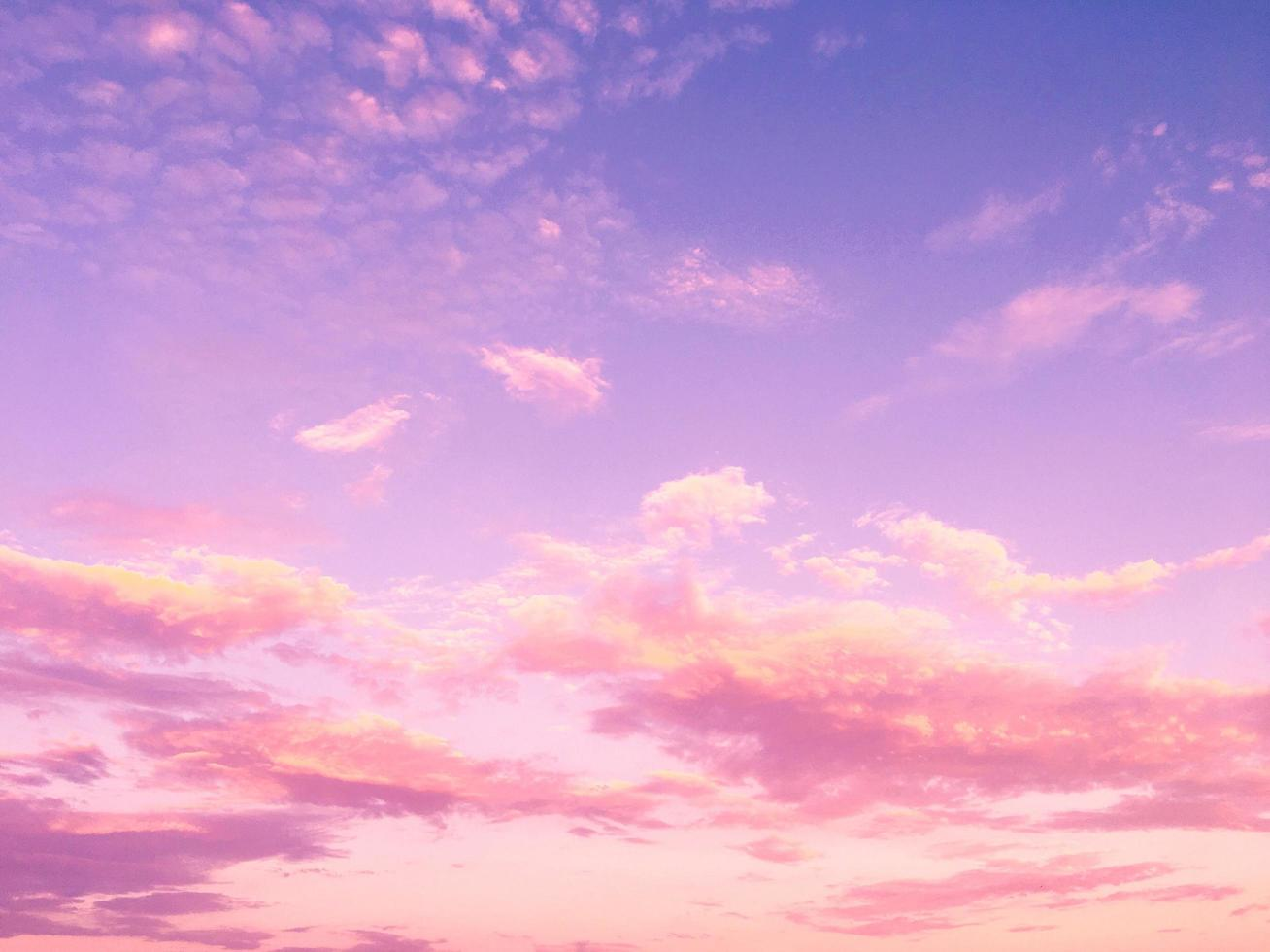 Pink clouds and purple blue sky photo