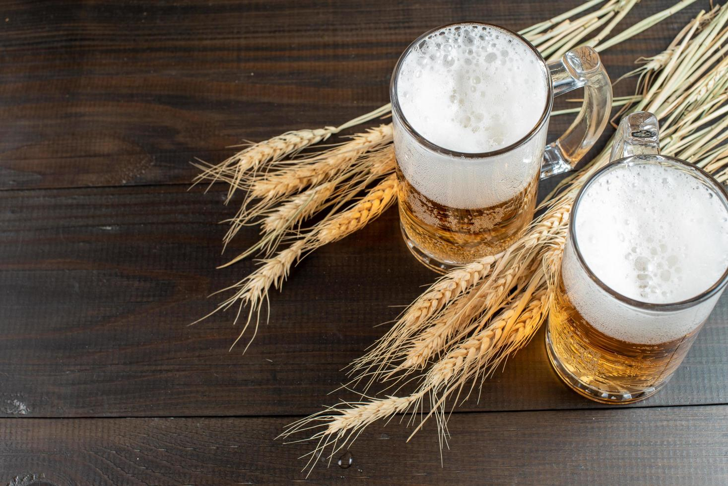 Glasses of beer with wheat stalks photo